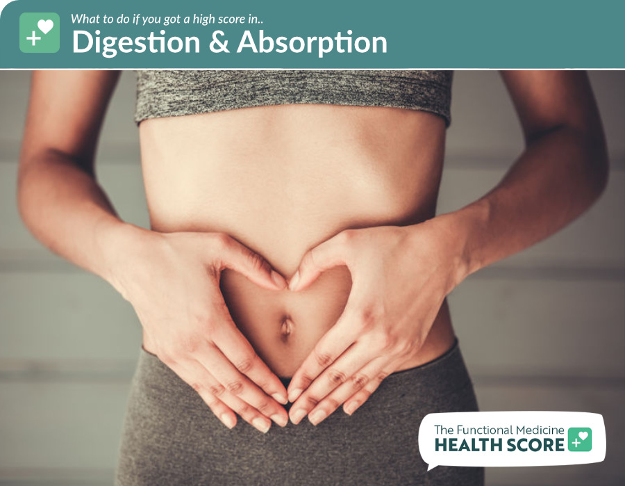 digestion absorption health score