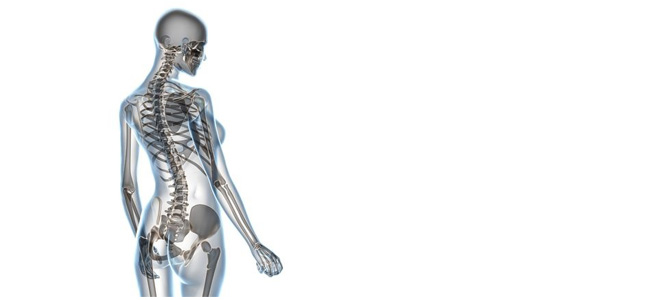 natural ways to support bone health image
